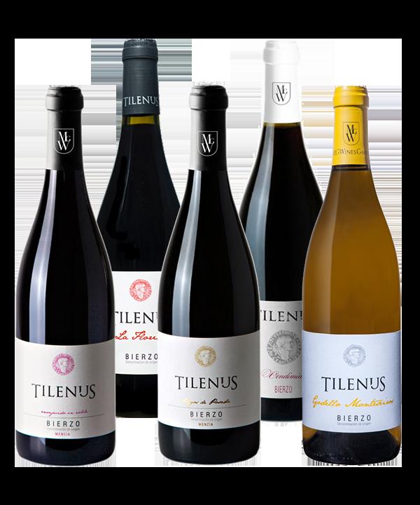 Selección Tilenus